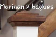 Morinan-2B